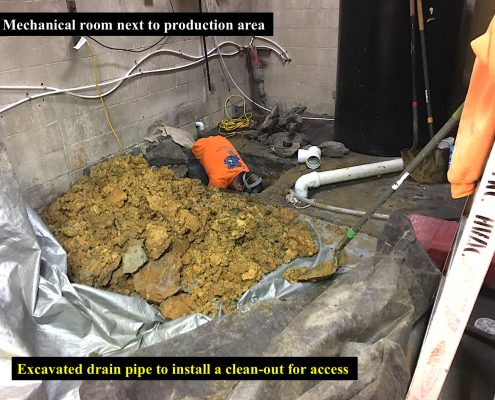 Excavated Drain Pipe Install Pipe Shark