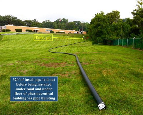 Pipe Shark Sewer Repair Services Trenchless